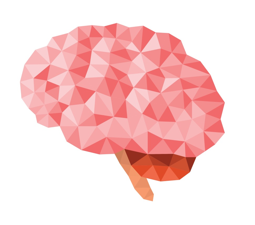 Brain Faceted